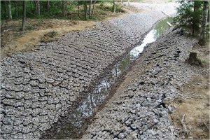 Укрепление дренажной канавы на дачном участке при помощи геосетки